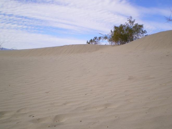 Les Sand Dunes de Death Valley, près de Stovepipe.