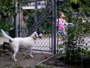 Mon chien Saku est la mascotte des enfants de ma ruelle