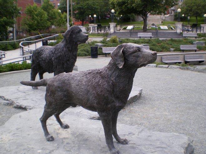 Un terre-neuve et un labrador accueillent les navires et les visiteurs dans un parc riverain du port en eaux intérieures de St.John's-St-Jean, la capitale de la province qui porte le nom de ces chiens marins devenus urbains.