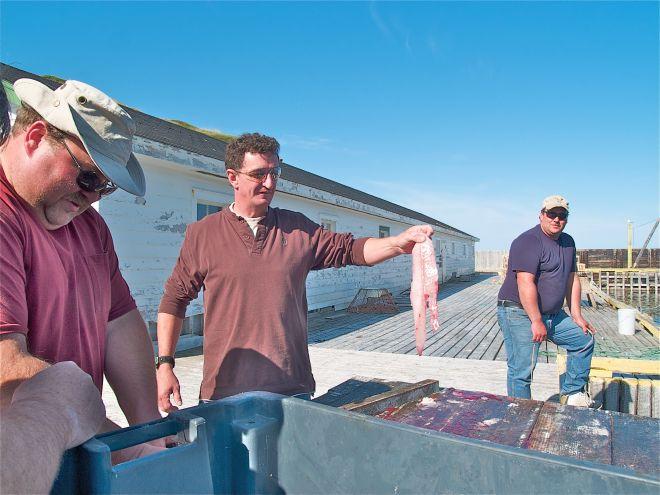 Jody, Keith et Jerry sur le quai, avant la pêche à la morue