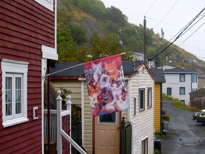 Petit matin de brume dans The Battery, St.John's, sur la rue menant au sentier Cap North de Signal Hill. Photo : Jacinthe Tremblay