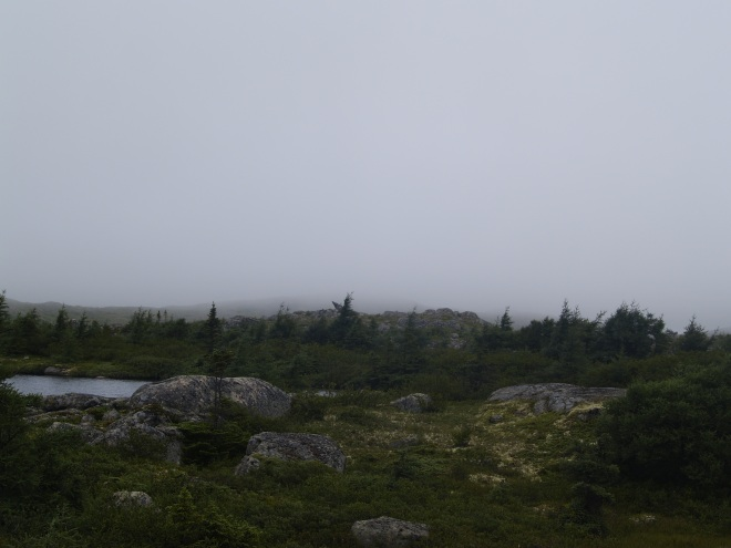 Un peu de la beauté troublante de Fogo Island. Photo : Jacinthe Tremblay