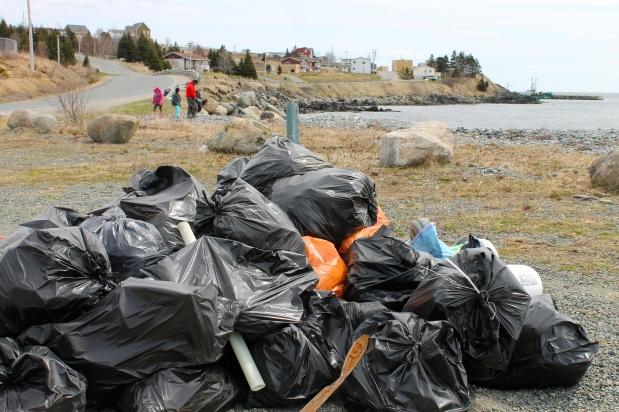 Réflexions autour du maquareux de vidanges (Garbage Puffin) de Witless Bay –Introduction